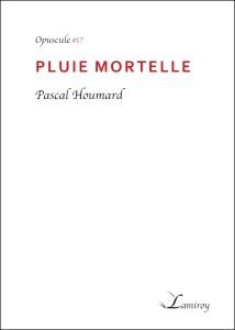 Pascal_Houmard_Pluie_mortelle_contour_noir