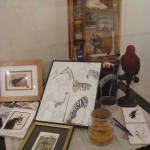Expo Fima-DavidP. Musée des Sciences Naturelles de Tournai-2004 (20)