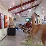 Expo Fima-DavidP. Musée des Sciences Naturelles de Tournai-2004 (32)
