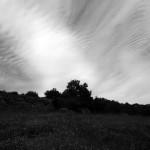 015-bouisse terme bugarach mai 2014 014