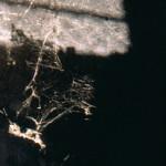 Intérieur - Extérieur