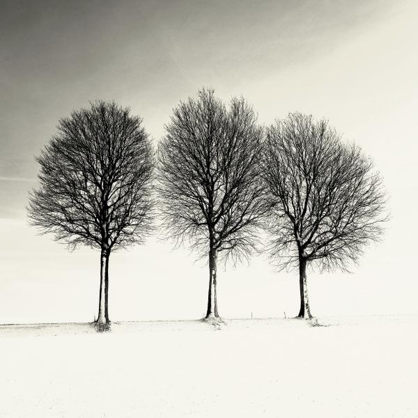 © Alain Trellu 1