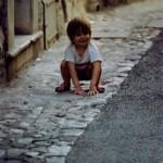 Petit provençal